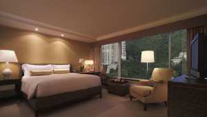 King Bed Peak View Room