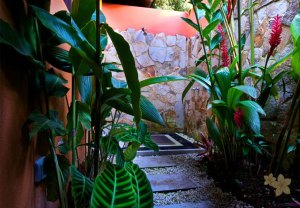 Nayara Hotel, Spa & Gardens12