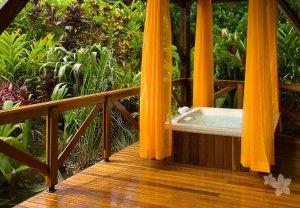 Nayara Hotel, Spa & Gardens14