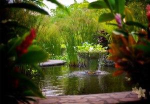 Nayara Hotel, Spa & Gardens8