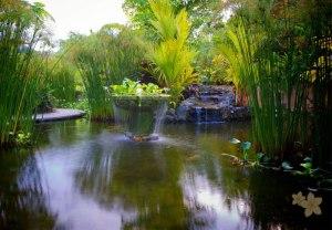Nayara Hotel, Spa & Gardens9