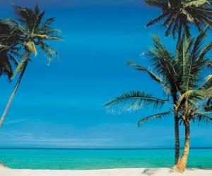The Brazilian Court Hotel & Beach Club8