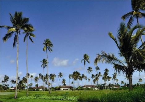 The Residence, Zanzibar26