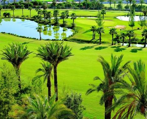 Gran Bahia Del Duque Resort, Tenerife45