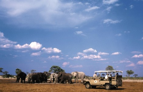 Orient-Express Safaris, Maun - Botswana13