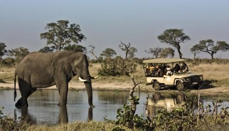 Orient-Express Safaris, Maun - Botswana30