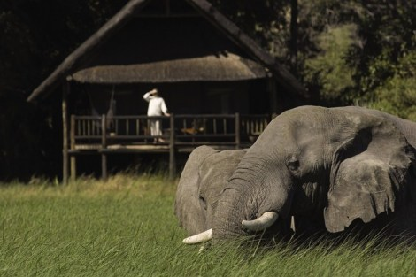 Orient-Express Safaris, Maun - Botswana31