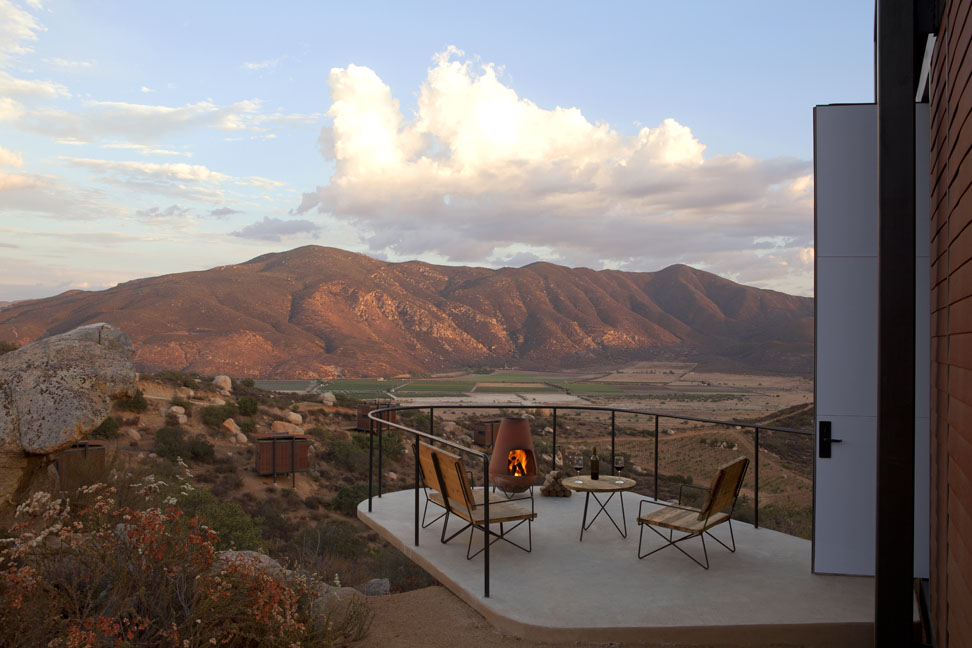 ENDÉMICO RESGUARDO SILVESTRE, Valle de Guadalupe Mexico