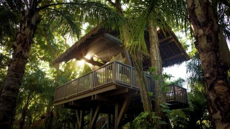 Dorado Beach, a Ritz-Carlton Reserve, Puerto Rico62